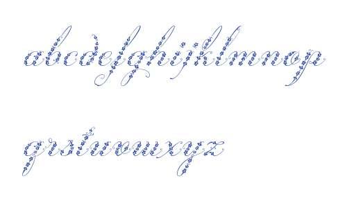 Weingut Script W00 Regular