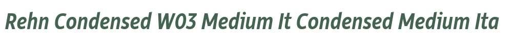 Rehn Condensed W03 Medium It