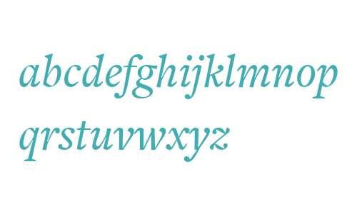 FreightText W03 Medium Italic