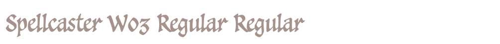 Spellcaster W03 Regular