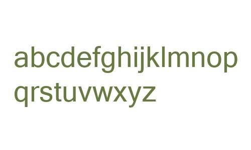Microsoft Sans Serif