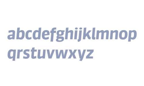 Sanuk Big W04 Bold Italic