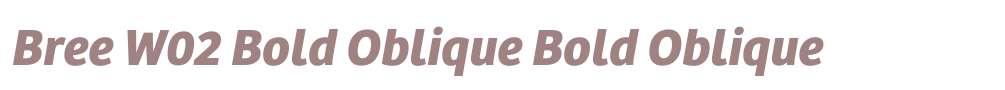 Bree W02 Bold Oblique