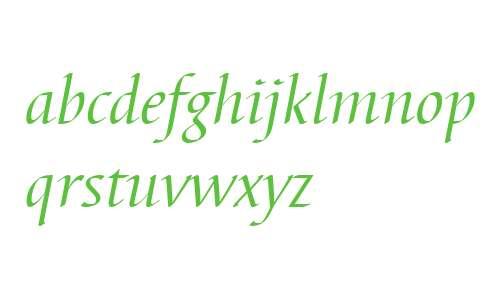 Barbedor W04 Italic