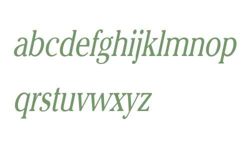 Chelsey Thin Italic