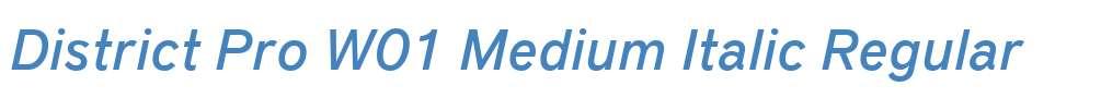 District Pro W01 Medium Italic