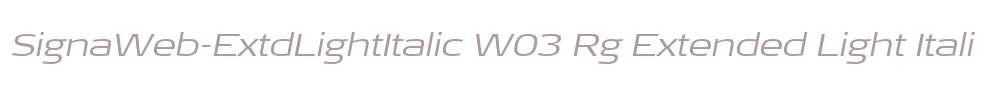 SignaWeb-ExtdLightItalic W03 Rg