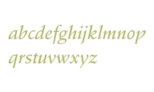 Stempel Schneidler Medium Italic