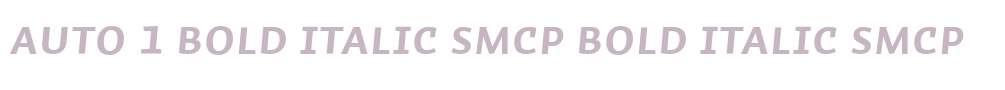 Auto 1 Bold Italic SmCp
