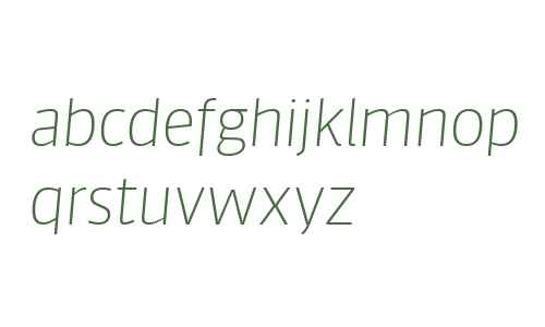 Sanuk Big W04 Thin Italic
