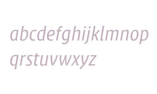 Klaus FY W04 Italic