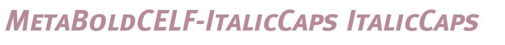 MetaBoldCELF-ItalicCaps