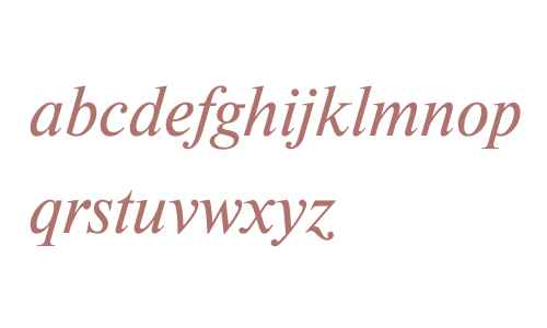 Newton Web Italic