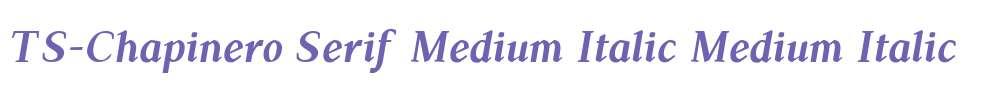 TS-Chapinero Serif Medium Italic