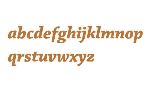 Chaparral Pro Bold Italic Subhead