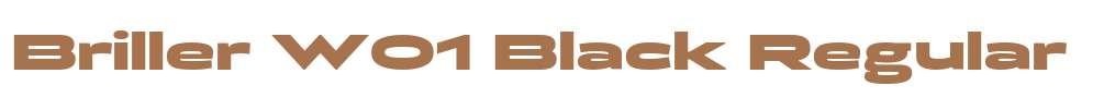 Briller W01 Black