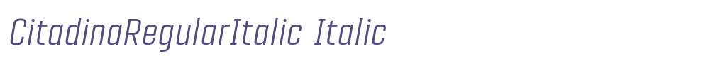 CitadinaRegularItalic