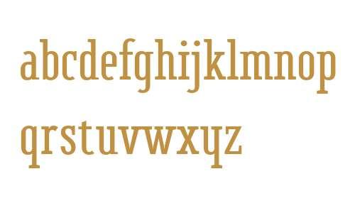 BF Corpa Serif W01 Bold