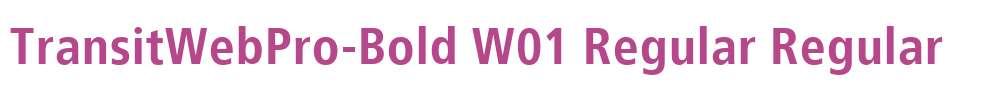 TransitWebPro-Bold W01 Regular