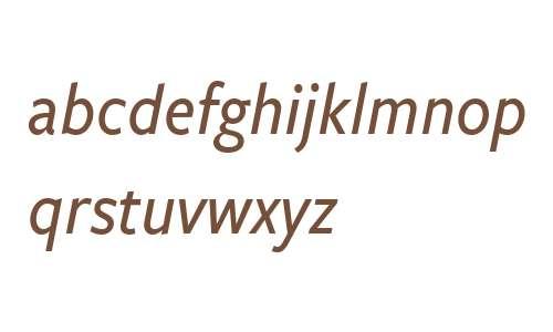 FreightSansCnd W03 Med Italic