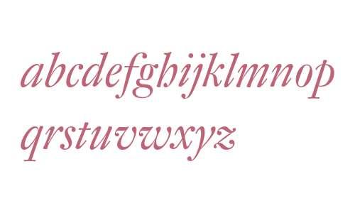 DTLFleischmannSD-Italic