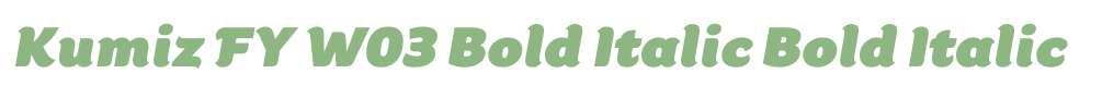 Kumiz FY W03 Bold Italic