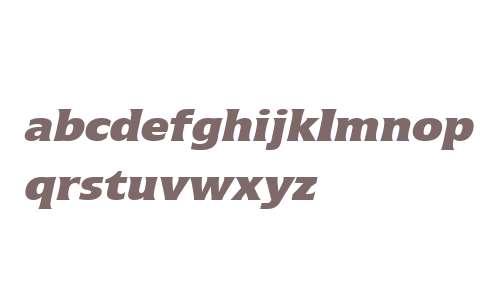 Icone W02 86 Extra Black Italic