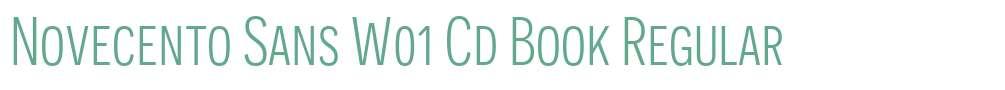 Novecento Sans W01 Cd Book
