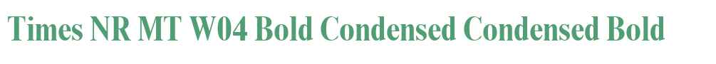 Times NR MT W04 Bold Condensed