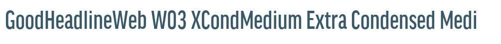 GoodHeadlineWeb W03 XCondMedium