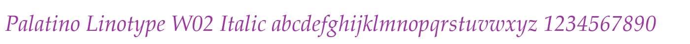 Palatino Linotype W02 Italic