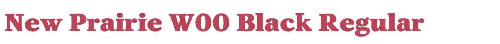 New Prairie W00 Black