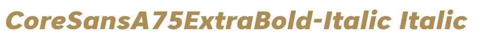 CoreSansA75ExtraBold-Italic