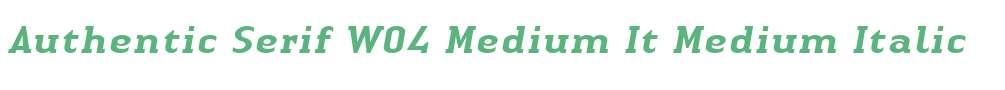 Authentic Serif W04 Medium It