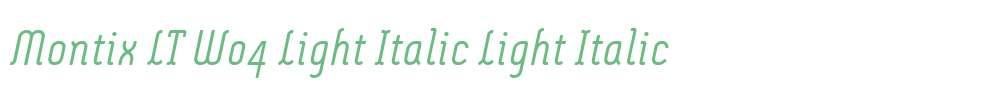 Montix LT W04 Light Italic