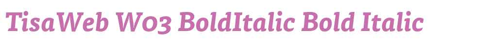 TisaWeb W03 BoldItalic