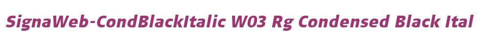 SignaWeb-CondBlackItalic W03 Rg