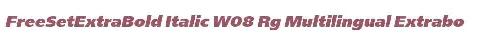 FreeSetExtraBold Italic W08 Rg