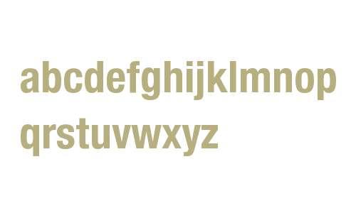HelveticaNeueLTW1G-BdCn