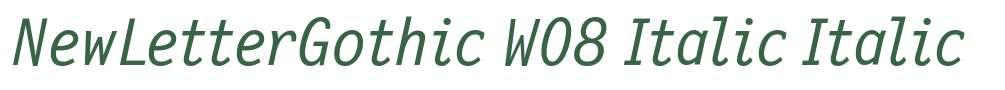 NewLetterGothic W08 Italic