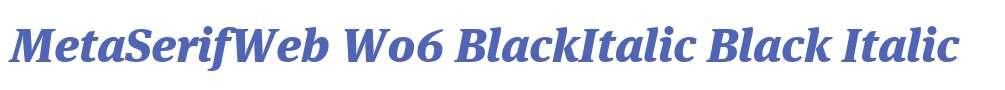 MetaSerifWeb W06 BlackItalic