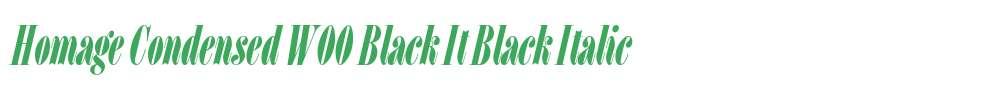 Homage Condensed W00 Black It