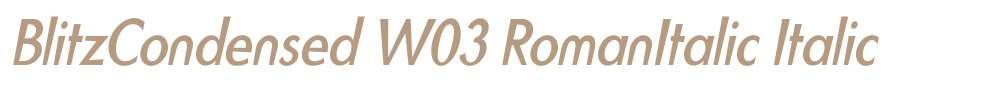 BlitzCondensed W03 RomanItalic