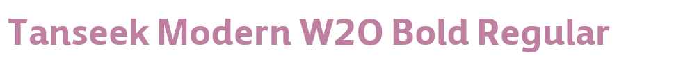 Tanseek Modern W20 Bold