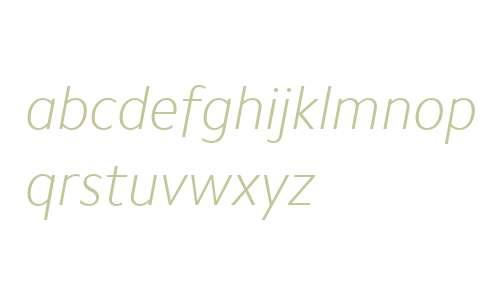 Camphor W01 Thin Italic