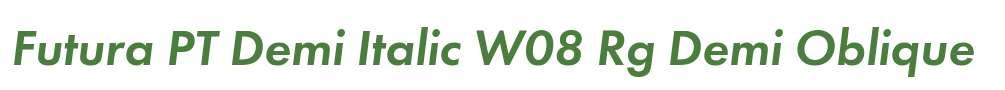 Futura PT Demi Italic W08 Rg