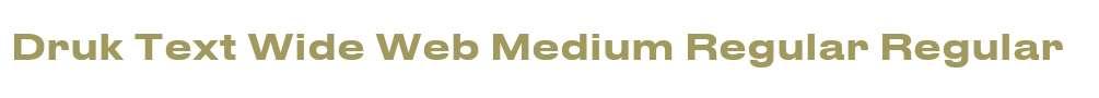 Druk Text Wide Web Medium Regular