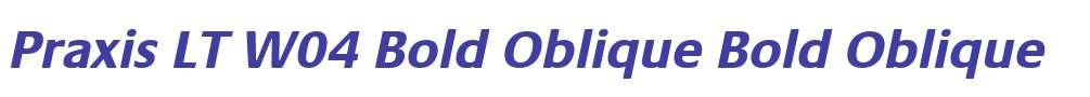 Praxis LT W04 Bold Oblique