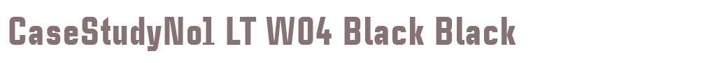 CaseStudyNo1 LT W04 Black