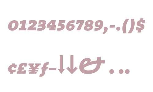 TheSerif ExtraBold Expert Italic